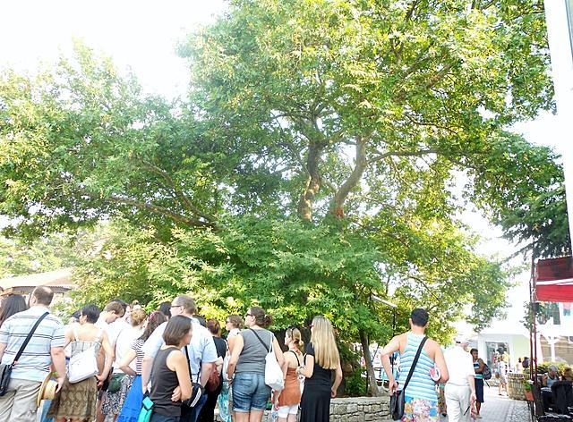 按图片以查看大图名称: cinar 900 years old 九百年老树ohrid macedonia 824 2012 (47) (2560x1920).jpg查看次数: 4文件大小: 2.93 MBID: 830102
